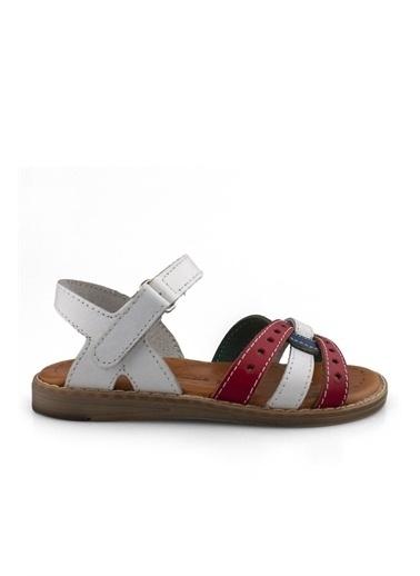 Cici Bebe Ayakkabı Kız Çocuk Sandalet Beyaz